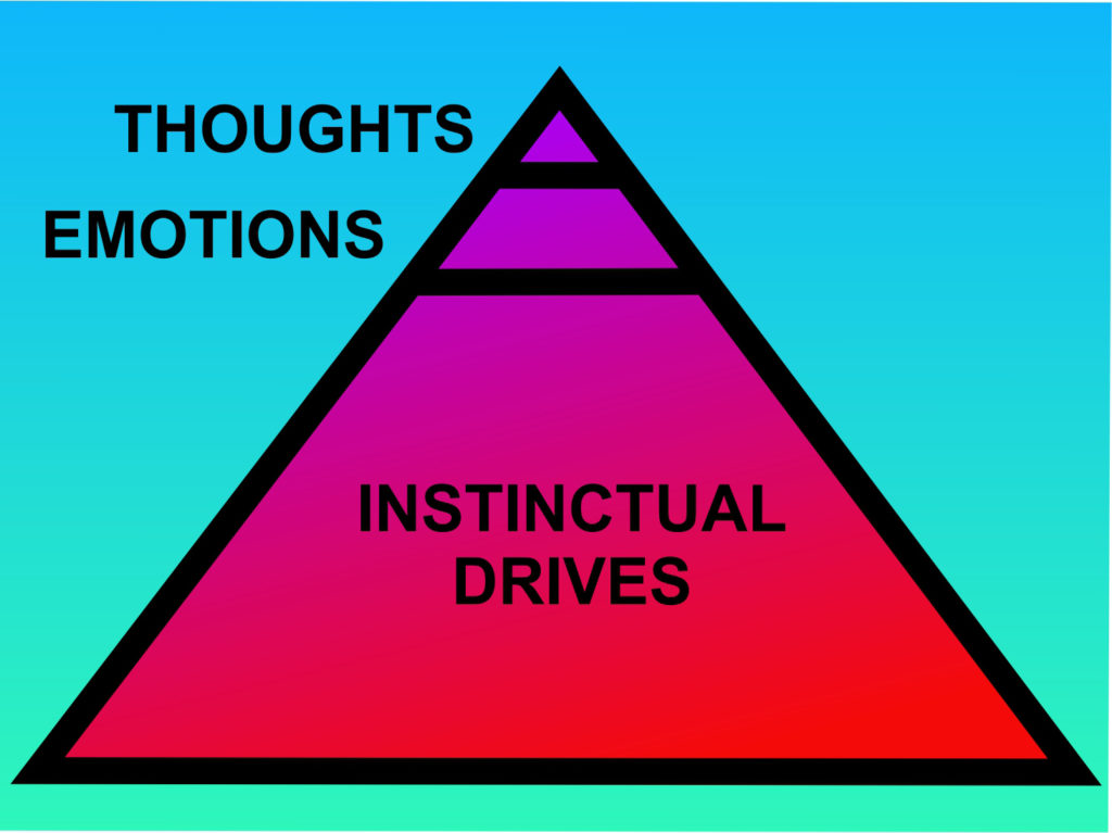 the enneagram and instinctual drives in relationships